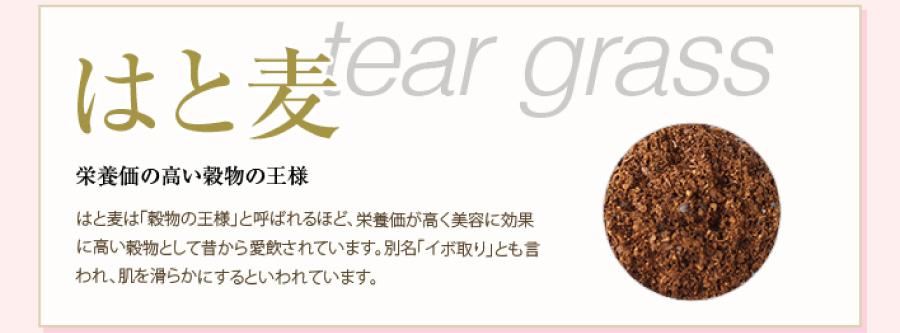 はと麦 tear grass 栄養価の高い穀物の王様。はと麦は「穀物の王様」と呼ばれるほど、栄養価が高く美容に効果に高い穀物として昔から愛飲されています。別名「イボ取り」とも言われ、肌を滑らかにするといわれています。